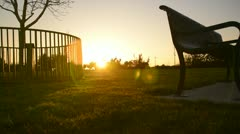 Park Sunset 01 Dolly Up L Bench and Tree - stock footage
