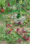 Backyard garden Stock Photos