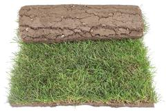 Grass carpet roll cut out Stock Photos