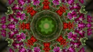 Stock Video Footage of Flowers kaleidoscope funny