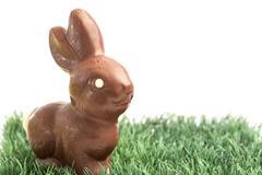 Chocolate bunny rabbit on grass - stock photo