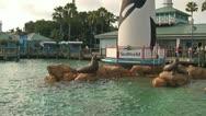 Entrance to Seaworld Adventure Park in Orlando, Florida Stock Footage