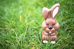 Chocolate bunny sitting in the grass - stock photo