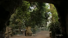 Scenes from a zoo - walking into an artificial tropical terrarium Stock Footage