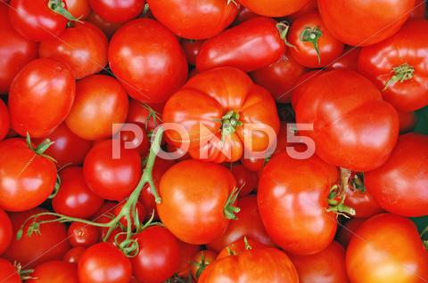Stock photo of Fresh tomatoes