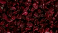 Stock Video Footage of Dry Cranberry