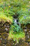 window of overgrown icelandic house - stock photo