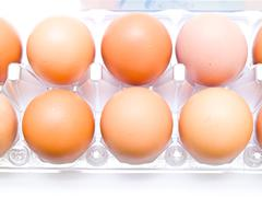 Eggs in plastic pack isolated on white  background Stock Photos
