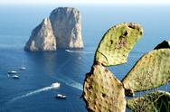 Stock Photo of Faraglioni rocks at Capri island