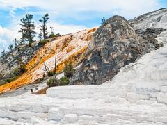 Mammoth Hot Springs of Yellowstone Stock Photos