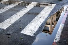Stock Photo of crosswalk reflection
