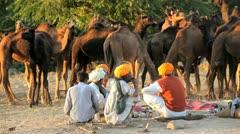 Tribesmen with camel herds Camel Fair, Pushkar, India Stock Footage