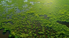 Aerial view Everglades  largest Sub tropical region in USA - stock footage
