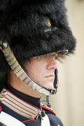 Stock Photo of royal guard