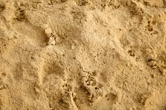 damp sand - stock photo