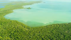 Aerial view Wetlands Southern Florida Stock Footage