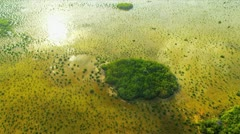 Aerial view Everglades  largest Sub tropical region in USA Stock Footage
