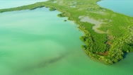 Stock Video Footage of Aerial view coastal Island Wetlands Southern Florida
