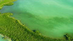 Aerial view Southern Sub tropical Island, USA Stock Footage