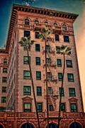Building and Palm Trees - stock illustration