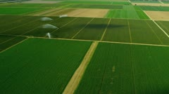 Aerial view agricultural farming land Southern Florida Stock Footage