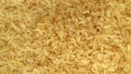 Rice Rotating Stock Footage