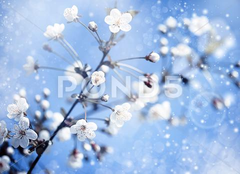 Stock Illustration of apple tree with flowers under blue skies. optimistic abstract backgrounds