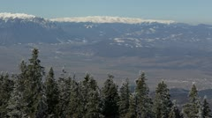 Winter Scenery Fir Woods Mountain Cliff Chilly Weather Panoramic Aerial View Day - stock footage