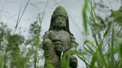 Stone statue of Shiva in blowing green grass Stock Footage