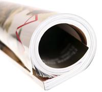 woman's rolled glossy magazine - stock photo