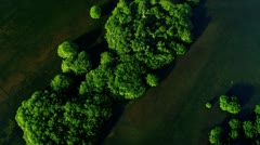 Aerial view showing  ecosystems, Southern Florida - stock footage