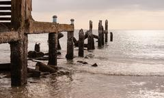 Old jetty in sea in overcast sky day Stock Photos