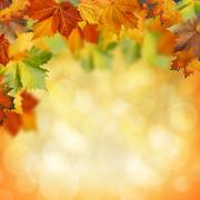 Natural beauty. autumnal abstract backgrounds for your design Stock Illustration