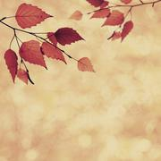 abstract autumnal backgrounds with beauty bokeh - stock illustration