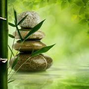 Natural zen backgrounds with bamboo leaves and pebble for your design Stock Illustration