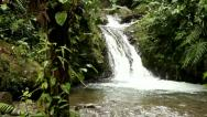Waterfall in cloud forest Stock Footage