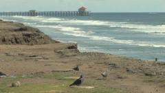 Huntington Beach Pier Cliffs and Ocean Waves HD 1080 Video Stock Footage Stock Footage