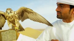 Bird of Prey Falco Cherrug Male Middle Eastern Owner - stock footage