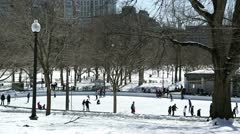 boston frog pond lampost winter - stock footage