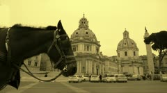 Horse parked on touristic spot. Vintage effect Stock Footage