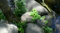 Stock Video Footage of walk imitation on stones in stream water flow