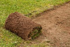 Roll of cut turf on lawn Stock Photos