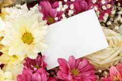 chrysanthemum rose bouquet border - stock photo