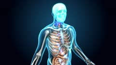 Medical Human - Upper Body Slow Zoom Stock Footage