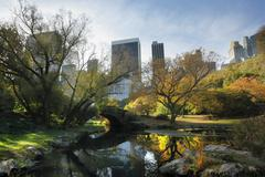 Stock Photo of central park in nyc