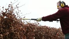 man trimming beech hedge with petrol hedge clippers - stock footage