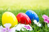 Easter eggs on green grass with flower Stock Photos