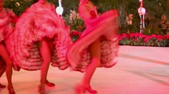Cancan performance from girls of famous Parisian cabaret Stock Footage