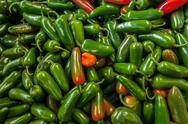 Delicious Green Jalapenos Stock Photos