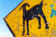 Goat Crossing Sign Stock Photos